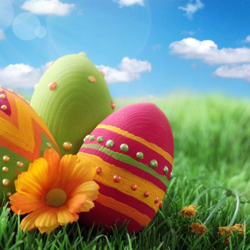 10 Top Free Easter Desktop Wallpapers FULL HD 1920×1080 For PC Background 2018 free download new easter desktop wallpaper gallery hd wallpaper free 2018 800x800