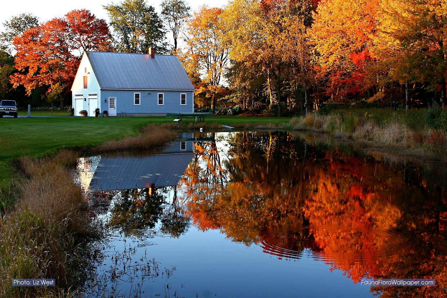 new england fall foliage | favorite places | pinterest | autumn