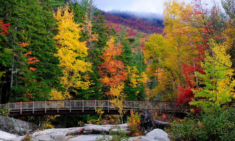10 Best New Hampshire Wallpaper FULL HD 1080p For PC Background 2020 free download new hampshire wallpapers 1280x768 780225 800x480