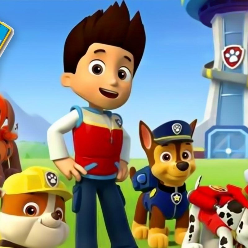 10 Latest Paw Patrol Wallpaper Hd FULL HD 1080p For PC Background 2018 free download new paw patrol desktop wallpaper gallery hd wallpaper free 2018 800x800