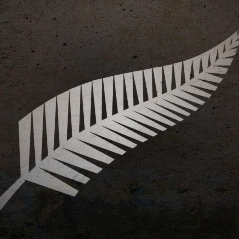 10 Most Popular New Zealand All Blacks Wallpapers FULL HD 1080p For PC Background 2020 free download new zealand all blacks wallpapers wallpaper cave 800x800
