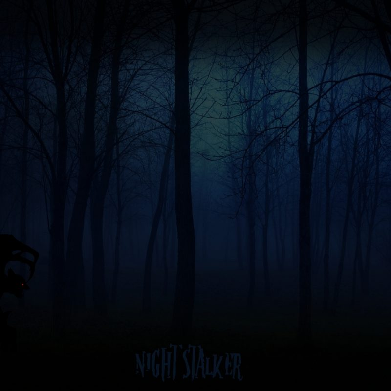 10 Top Woods At Night Wallpaper FULL HD 1920×1080 For PC Background 2020 free download night stalker in the woodsciscopete24 on deviantart 800x800