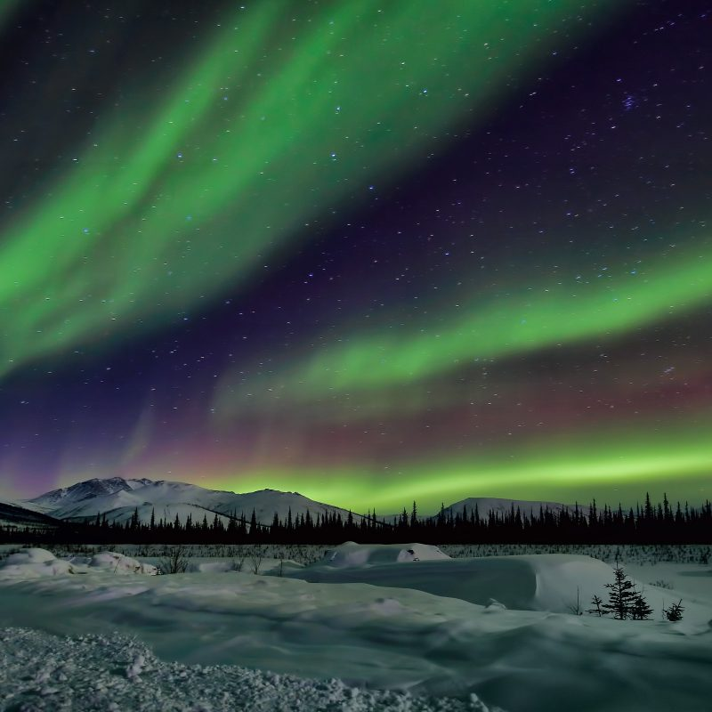 10 New Winter Northern Lights Wallpaper FULL HD 1920×1080 For PC Desktop 2021 free download northern lights sky night winter star wallpaper 3600x2400 282233 800x800