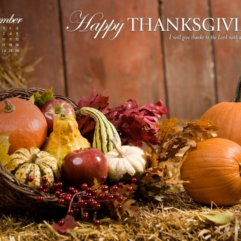 10 Latest Free Thanksgiving Computer Wallpaper FULL HD 1920×1080 For PC Background 2020 free download november 2012 thanksgiving wallpaper celebrate thanksgiving 1 800x800