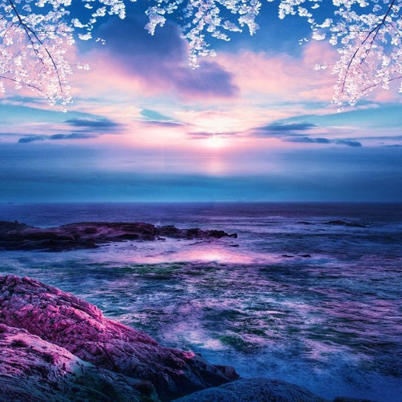 10 Top Ocean Pictures For Wallpaper FULL HD 1080p For PC Background 2020 free download ocean wallpaper www gnome look 800x800