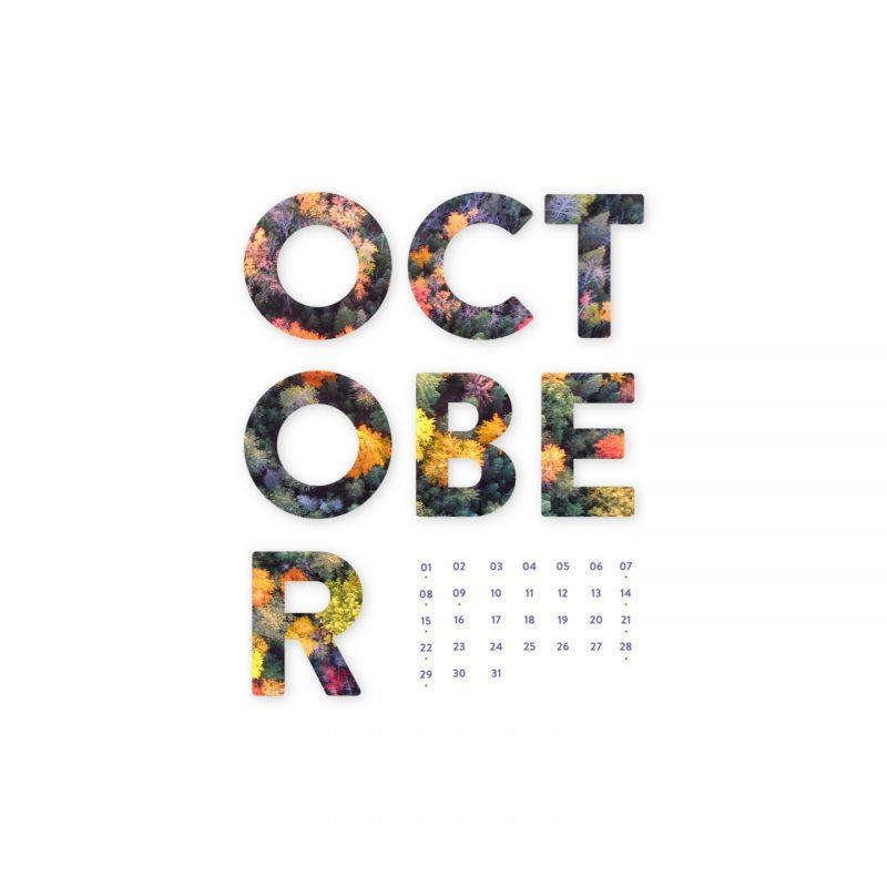 10 New October 2017 Desktop Wallpaper FULL HD 1920×1080 For PC Background 2021 free download october 2017 desktop calendar wallpaper paper leaf 800x800