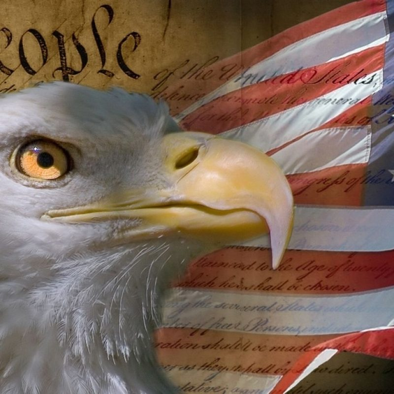 10 Most Popular American Flag Eagle Background FULL HD 1080p For PC Background 2020 free download of the most american things to ever happen 1 800x800