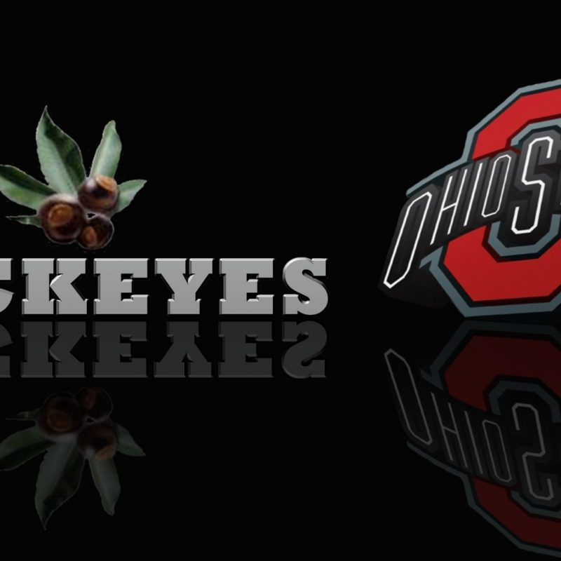 10 Most Popular Ohio State Screen Savers FULL HD 1920×1080 For PC Desktop 2020 free download ohio state 448295 walldevil 800x800
