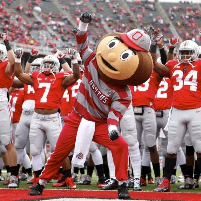 10 New Ohio State Buckeyes Image FULL HD 1920×1080 For PC Background 2021 free download ohio state buckeyes football 2016 17 season hype unstoppable 800x800