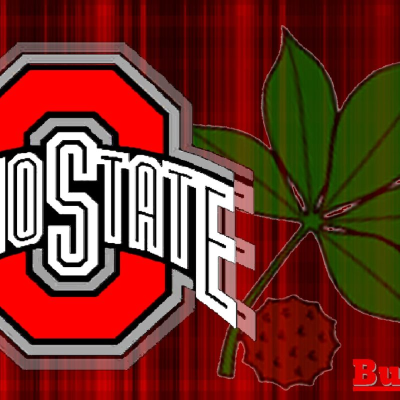 10 New Ohio State Buckeyes Image FULL HD 1920×1080 For PC Background 2021 free download ohio state buckeyes images red block o white ohio state with buckeye 800x800