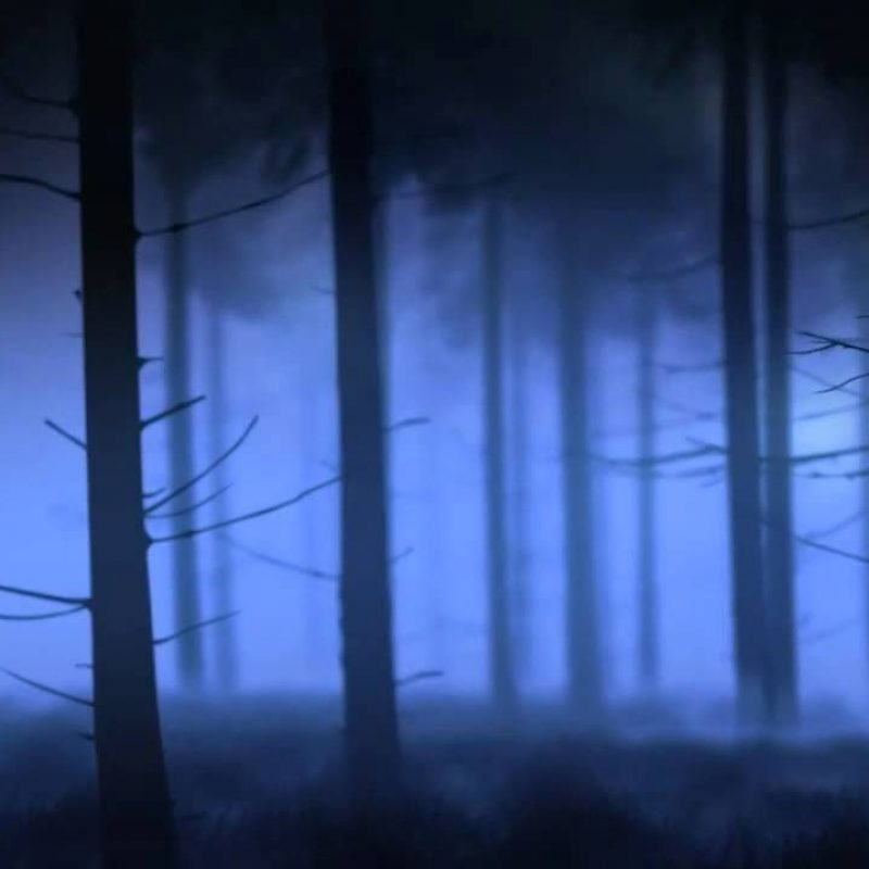 10 Latest Once Upon A Time Backgrounds FULL HD 1080p For PC Desktop 2018 free download once upon a time forest background youtube 800x800