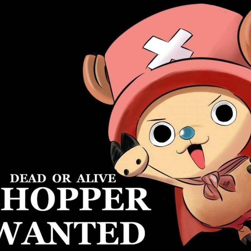 10 Most Popular One Piece Chopper Wallpaper FULL HD 1920×1080 For PC Desktop 2018 free download one piece cute chopper background cinema wallpaper 1080p 800x800