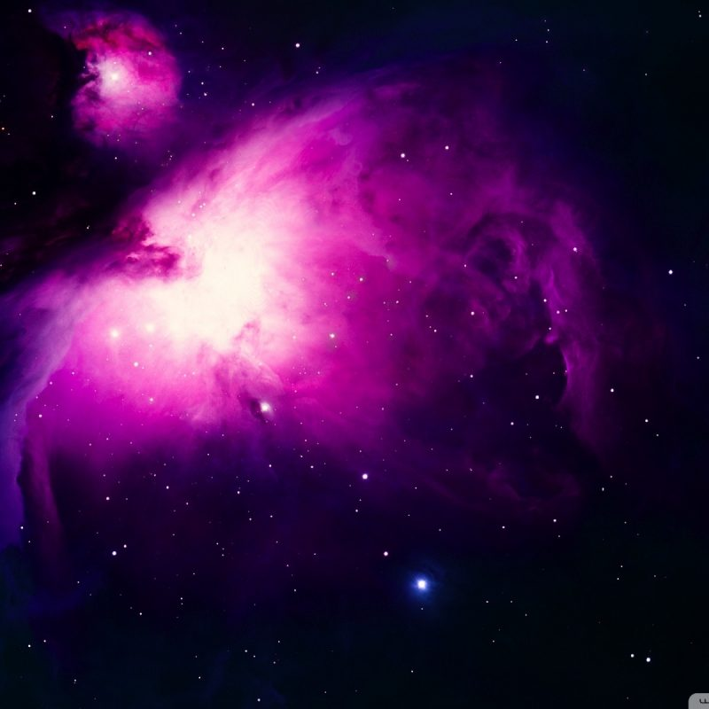 10 Most Popular Orion Nebula Wallpaper 1920X1080 FULL HD 1080p For PC Background 2018 free download orion nebula background e29da4 4k hd desktop wallpaper for 800x800