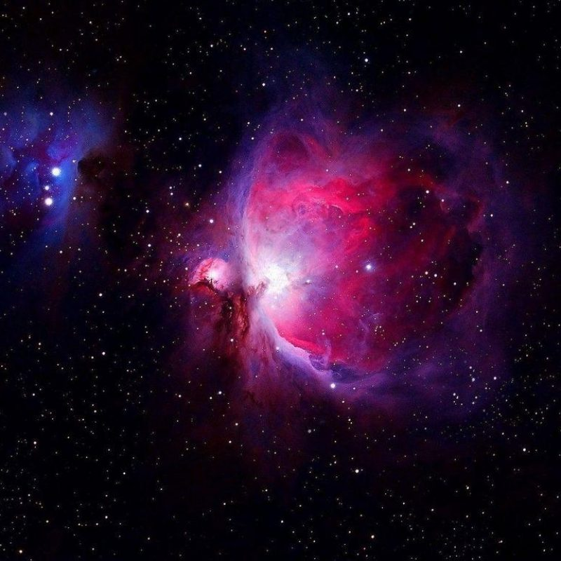 10 Most Popular Orion Nebula Wallpaper 1920X1080 FULL HD 1080p For PC Background 2018 free download orion nebula wallpapers wallpaper cave 800x800