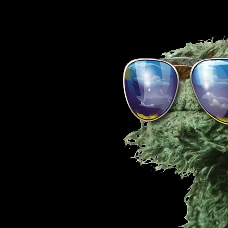 10 Best Oscar The Grouch Wallpaper FULL HD 1920×1080 For PC Desktop 2020 free download oscar the grouch 816379 walldevil 1 800x800