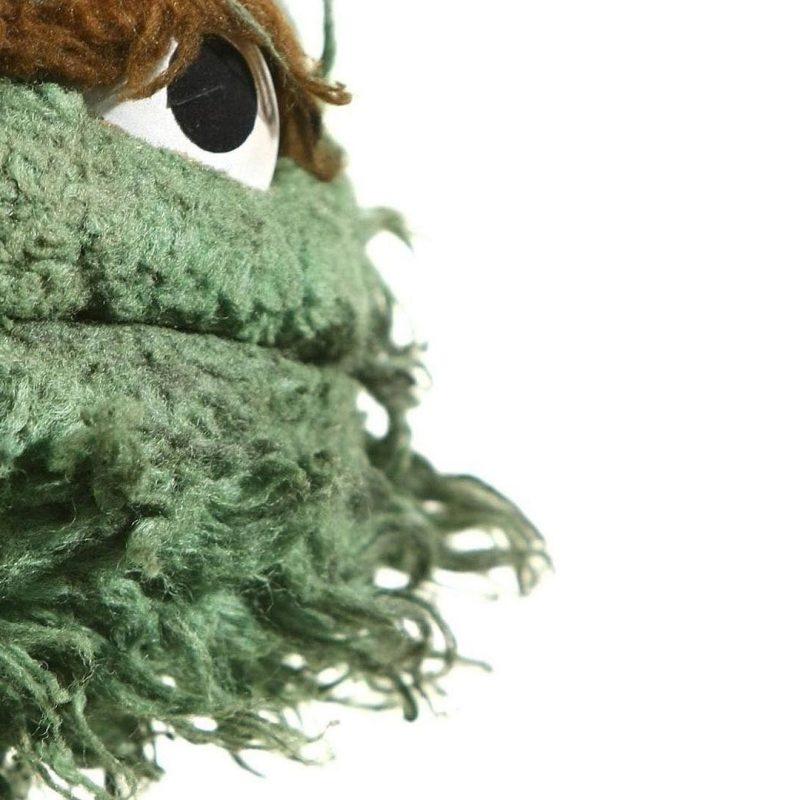 10 Best Oscar The Grouch Wallpaper FULL HD 1920×1080 For PC Desktop 2020 free download oscar the grouch wallpapers wallpaper cave 800x800