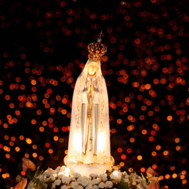 10 Latest Our Lady Of Fatima Wallpaper FULL HD 1920×1080 For PC Background 2018 free download our lady of fatima and the attempted assassination of a pope 800x800