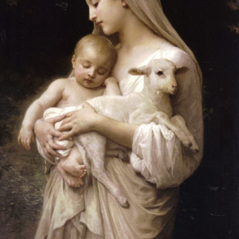 10 Top Mother Mary And Baby Jesus FULL HD 1920×1080 For PC Desktop 2020 free download our lady the blessed virgin mary holding the baby jesus and a lamb 800x800