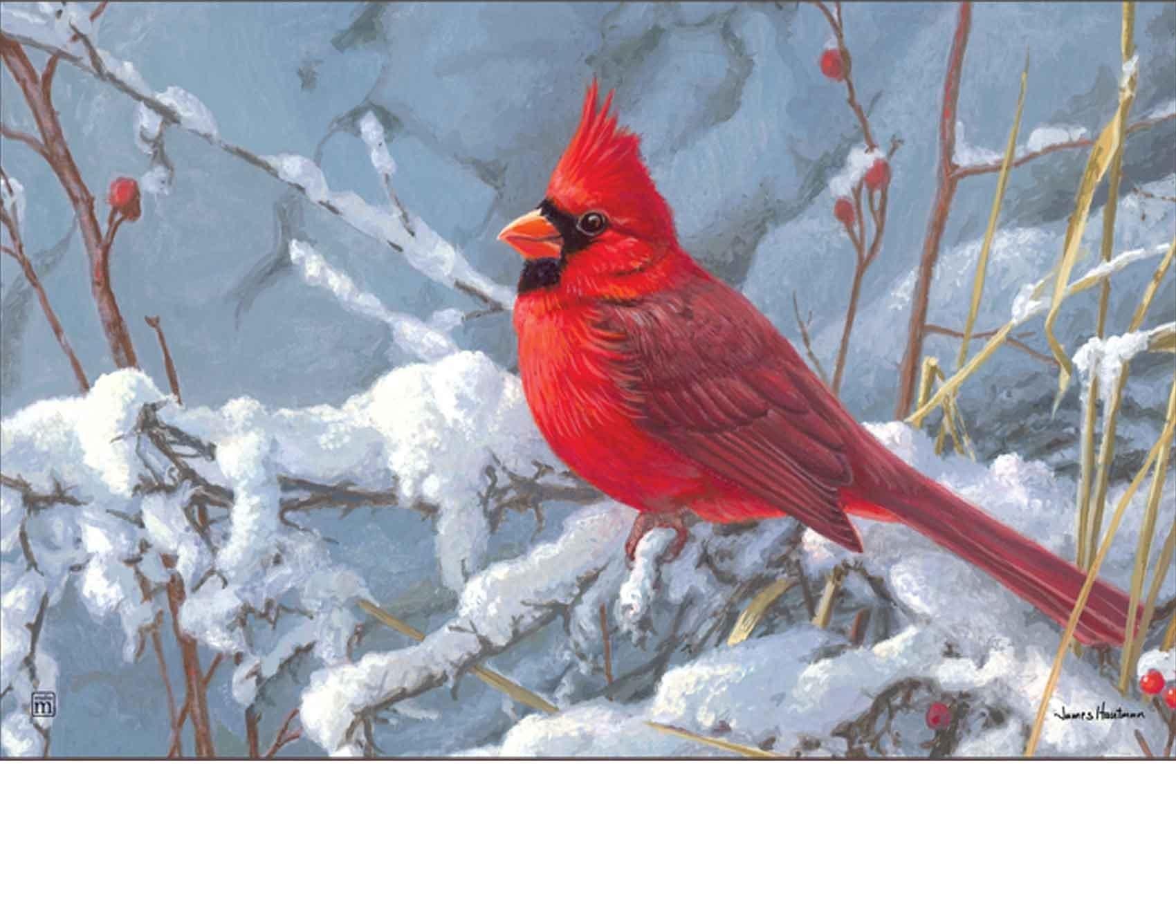 & outdoor cardinal in snow matmate doormat-18x30