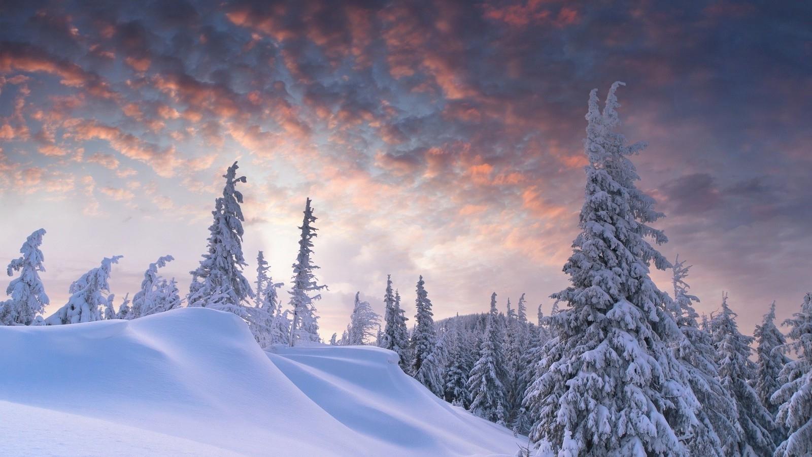outstanding winter scene wallpaper | allwallpaper.in #10437 | pc | en