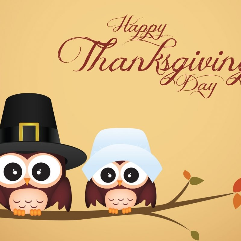 10 Most Popular Cute Happy Thanksgiving Backgrounds FULL HD 1080p For PC Background 2020 free download owl thanksgiving wallpaper android wallpaper wallpaperlepi 1 800x800