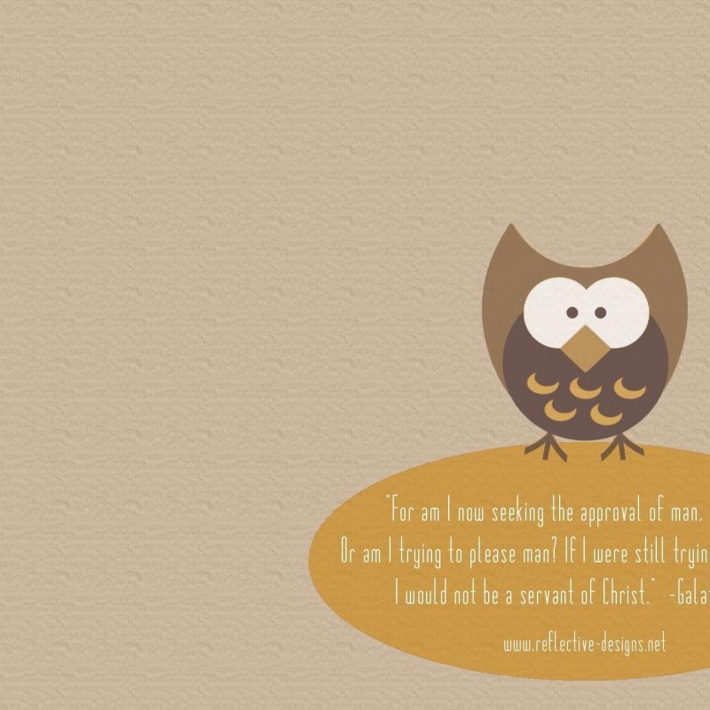 10 New Owl Backgrounds For Computer FULL HD 1920×1080 For PC Desktop 2021 free download owl wallpapers for computer wallpaper cave 1 800x800