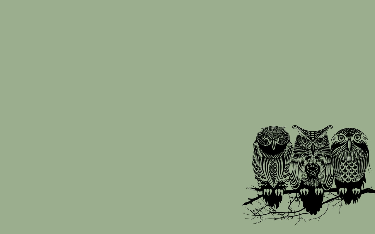 owl wallpapers for computer - wallpaper cave