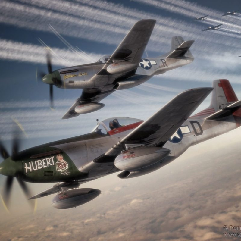 10 New P 51 Mustang Background FULL HD 1920×1080 For PC Desktop 2018 free download p51 mustangs art artwork vehicles p 51 b mustang nose art 800x800