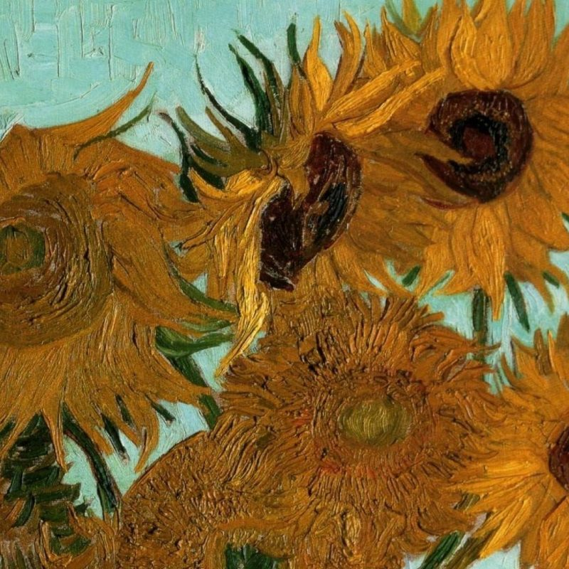 10 Top Vincent Van Gogh Wallpaper FULL HD 1080p For PC Desktop 2020 free download paintings vincent van gogh sunflowers vases still life wallpaper 800x800