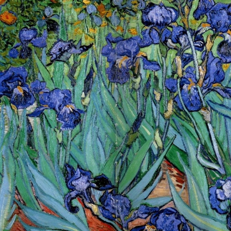 10 New Vincent Van Gogh Wallpaper Hd FULL HD 1080p For PC Background 2018 free download paintings vincent van gogh wallpaper 119809 1 800x800