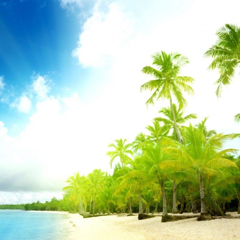 10 Top Beach And Palm Tree Wallpaper FULL HD 1920×1080 For PC Background 2018 free download palm trees beach e29da4 4k hd desktop wallpaper for 4k ultra hd tv 1 800x800