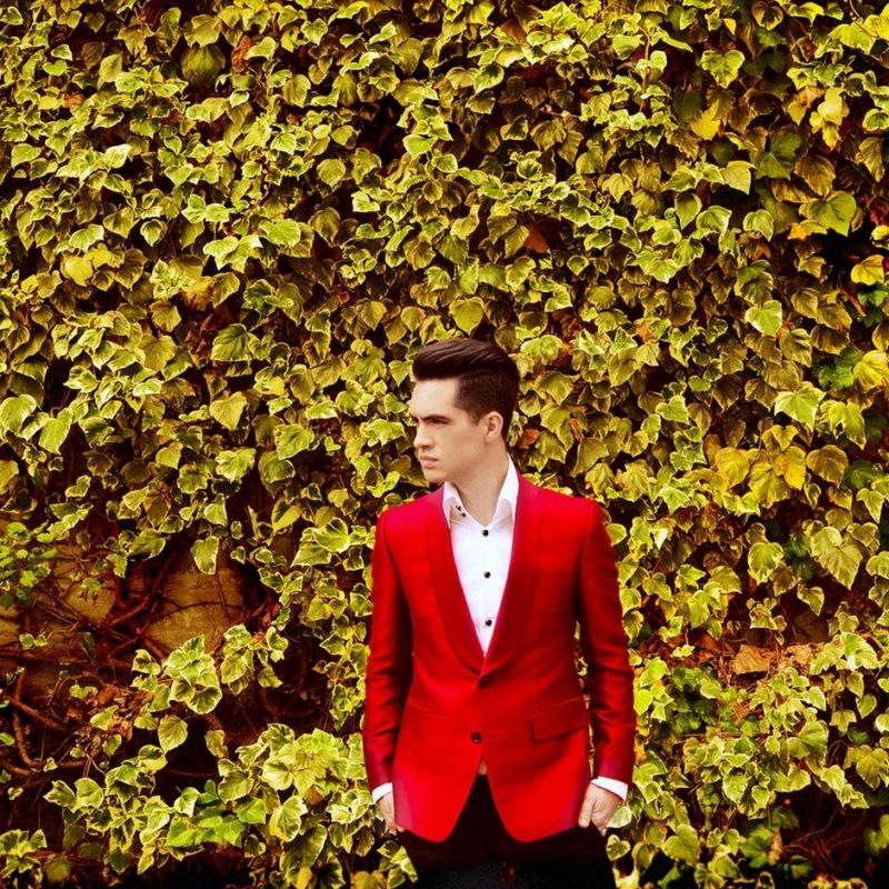 10 Latest Panic At The Disco Wallpaper FULL HD 1080p For PC Background 2018 free download panic at the disco en concert arte concert 800x800