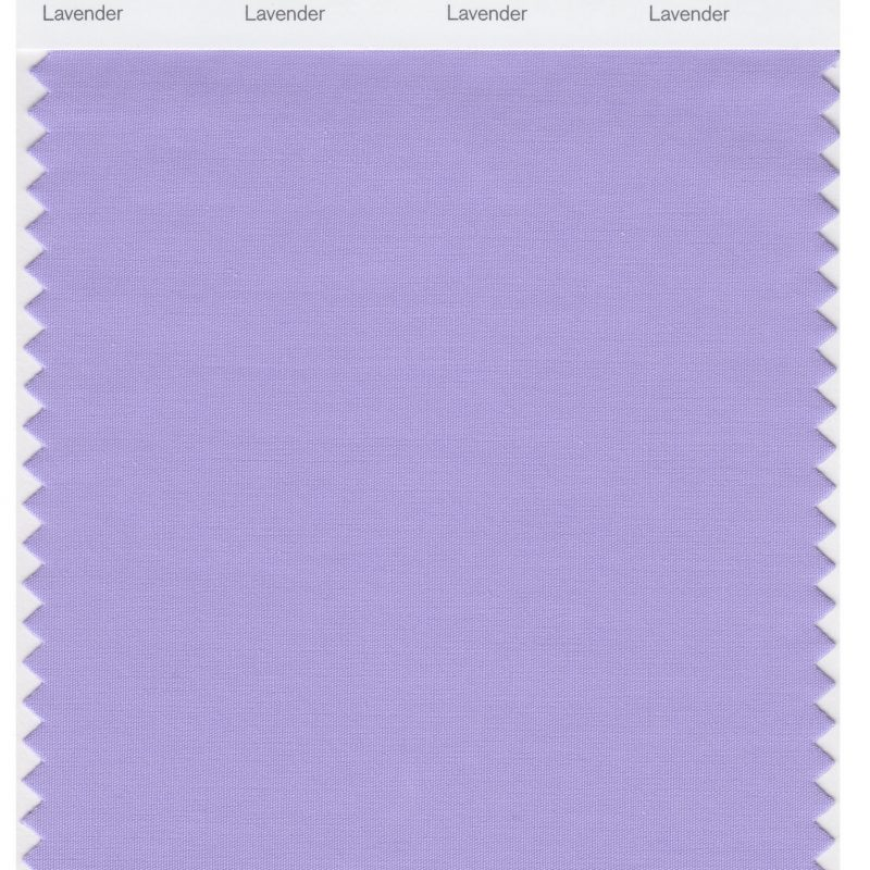 10 Top Pictures Of The Color Lavender FULL HD 1080p For PC Background 2020 free download pantone smart 15 3817 tcx color swatch card lavender magazine 800x800