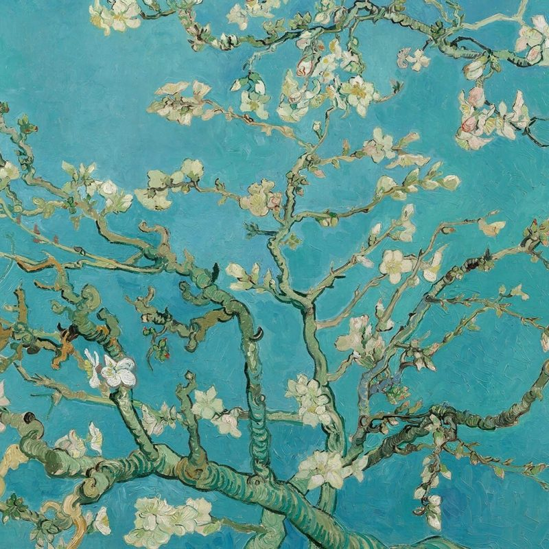 10 Top Van Gogh Almond Blossoms Wallpaper FULL HD 1920×1080 For PC Background 2018 free download papier peint fresque branches damandes de van gogh murals wallpaper 800x800