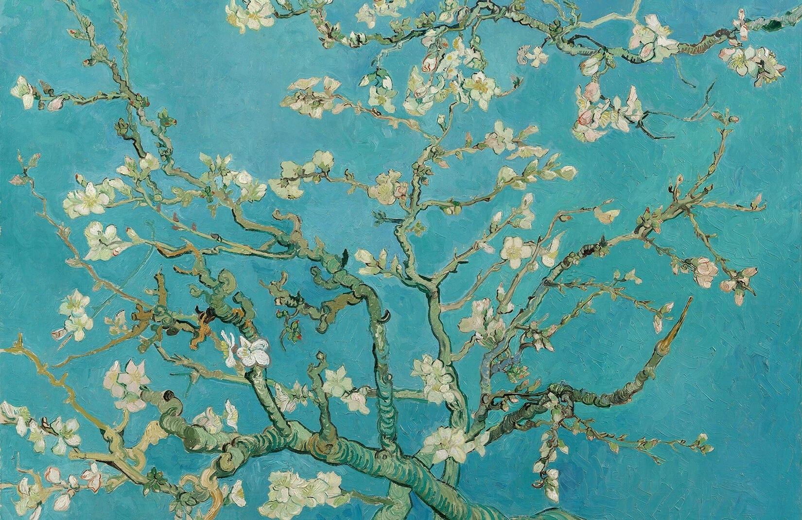 papier peint fresque branches d'amandes de van gogh - murals wallpaper