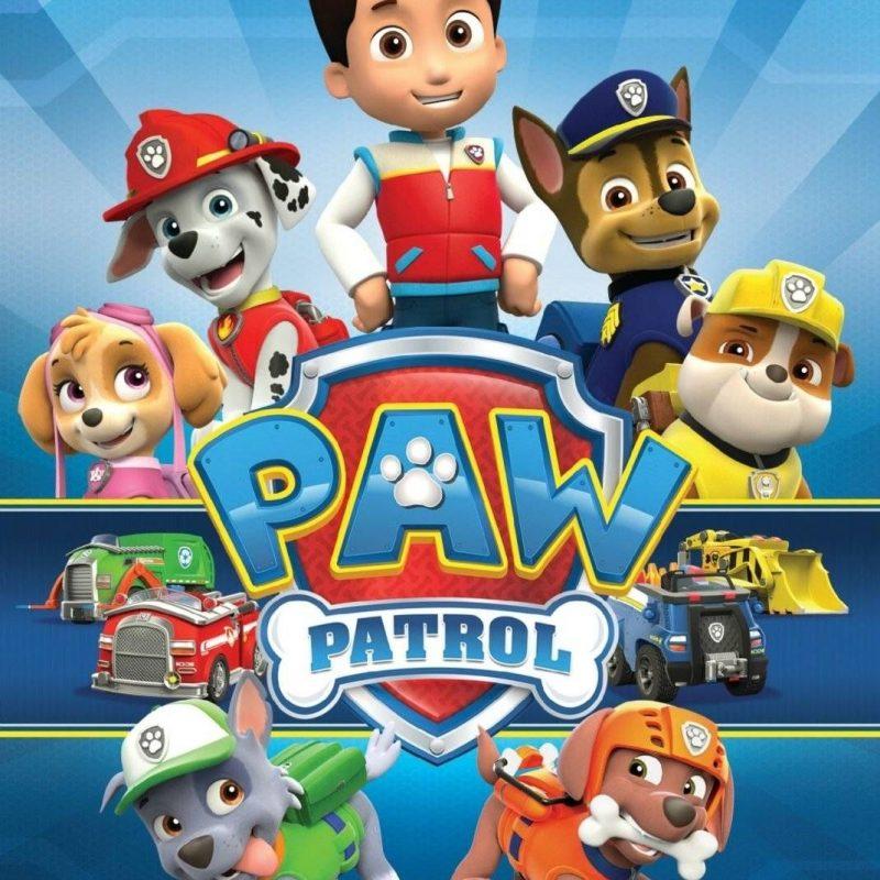 10 Best Paw Patrol Desktop Wallpaper FULL HD 1920×1080 For PC Desktop 2021 free download paw patrol images 3086 paw patrol hd wallpaper hd wallpaper and 800x800