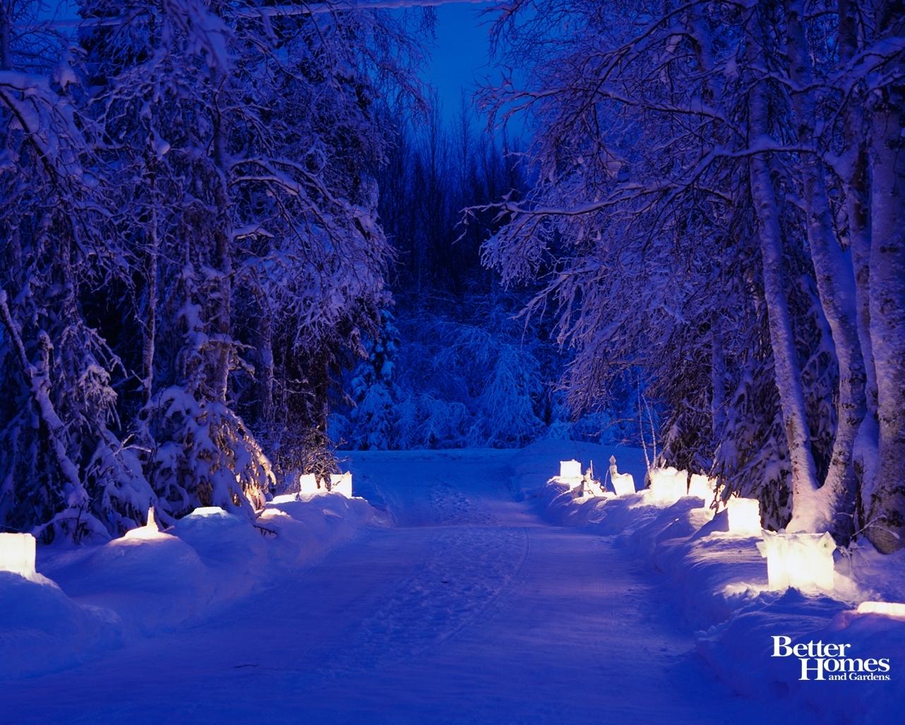 peaceful scenery trees | free winter wonder desktop wallpapers