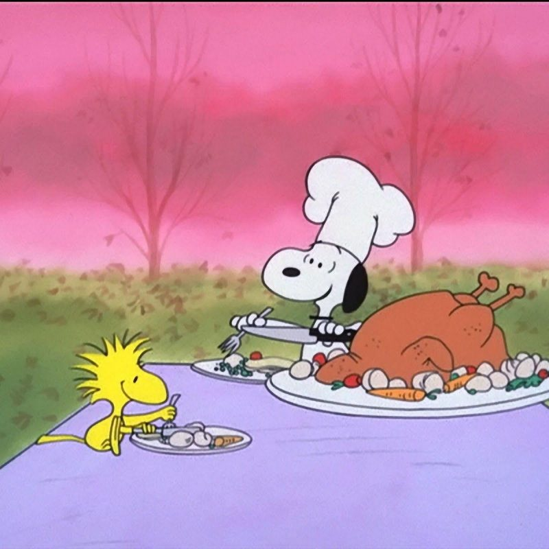 10 New Charlie Brown Thanksgiving Wallpaper FULL HD 1080p For PC Desktop 2018 free download peanuts thanksgiving wallpapers wallpaper cave 800x800