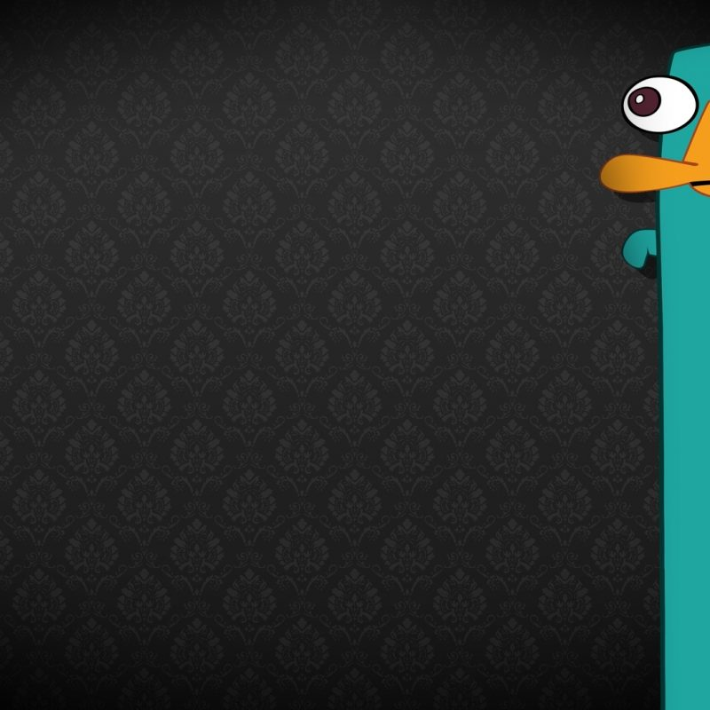 10 New Perry The Platypus Wallpaper FULL HD 1920×1080 For PC Background 2018 free download perry the platypus hd picture wallpapers 11809 hd wallpaper site 800x800