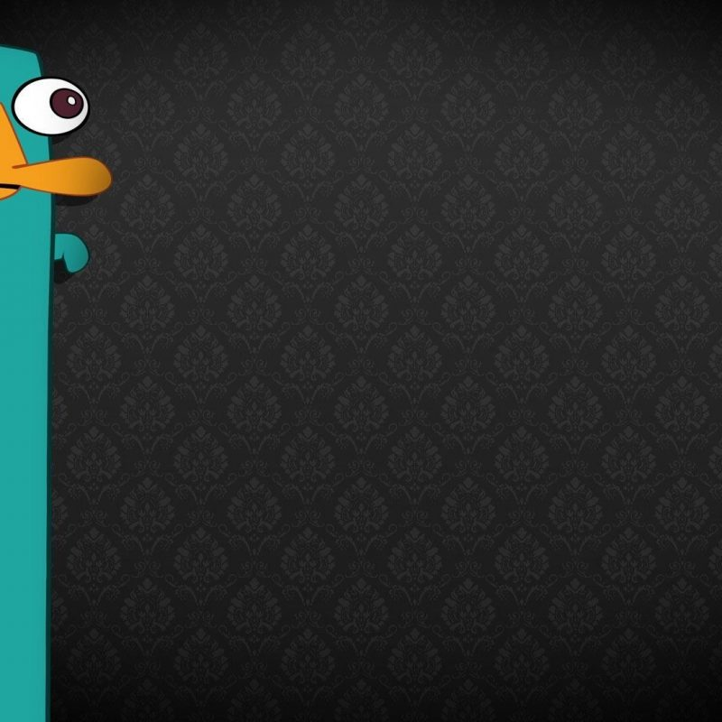 10 Latest Perry The Platypus Background FULL HD 1920×1080 For PC Background 2018 free download perry the platypus wallpapers wallpaper hd wallpapers pinterest 2 800x800