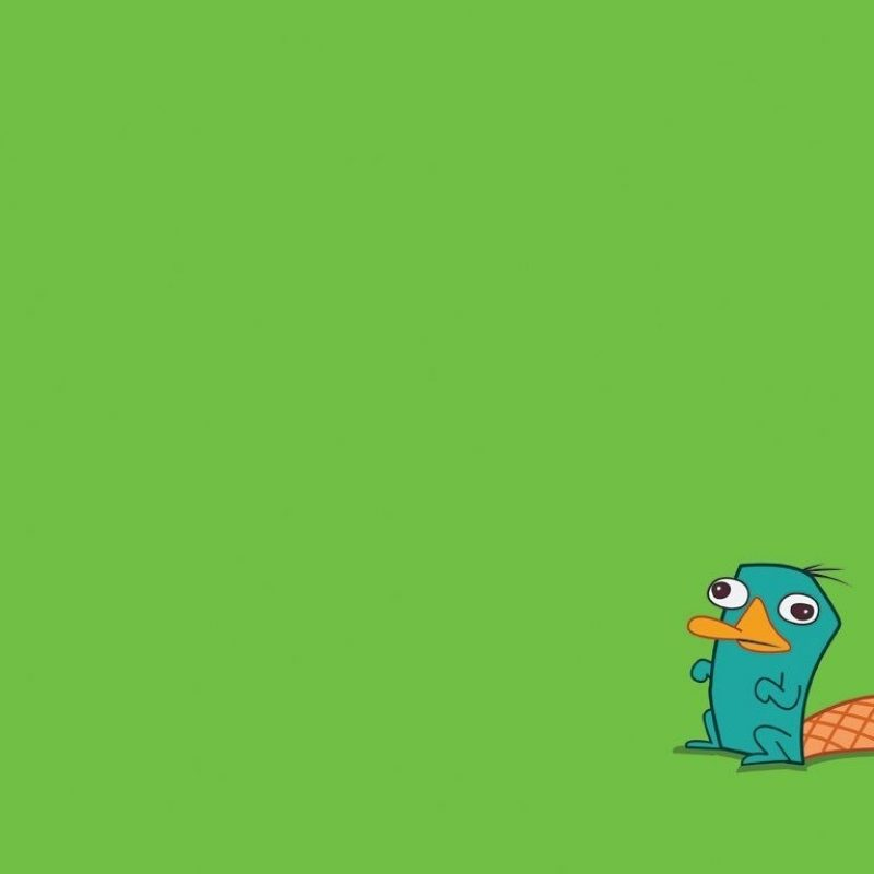 10 Latest Perry The Platypus Background FULL HD 1920×1080 For PC Background 2018 free download perry the platypus wallpapers wallpaper hd wallpapers pinterest 3 800x800