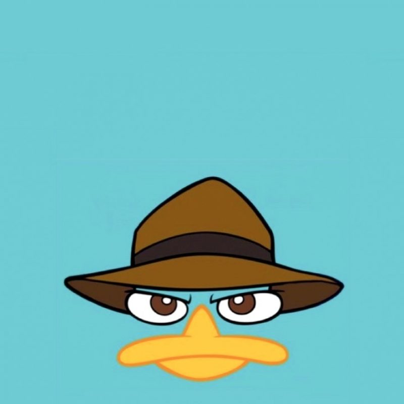 10 New Perry The Platypus Wallpaper FULL HD 1920×1080 For PC Background 2018 free download perry the platypus wallpapers wallpaper hd wallpapers pinterest 800x800