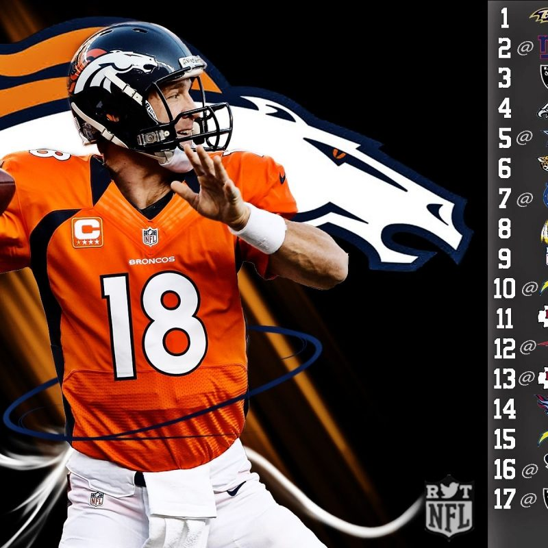 10 Top Denver Broncos Wallpaper 2015 FULL HD 1080p For PC Desktop 2020 free download peyton williams manning born march 24 1976 is an american 800x800