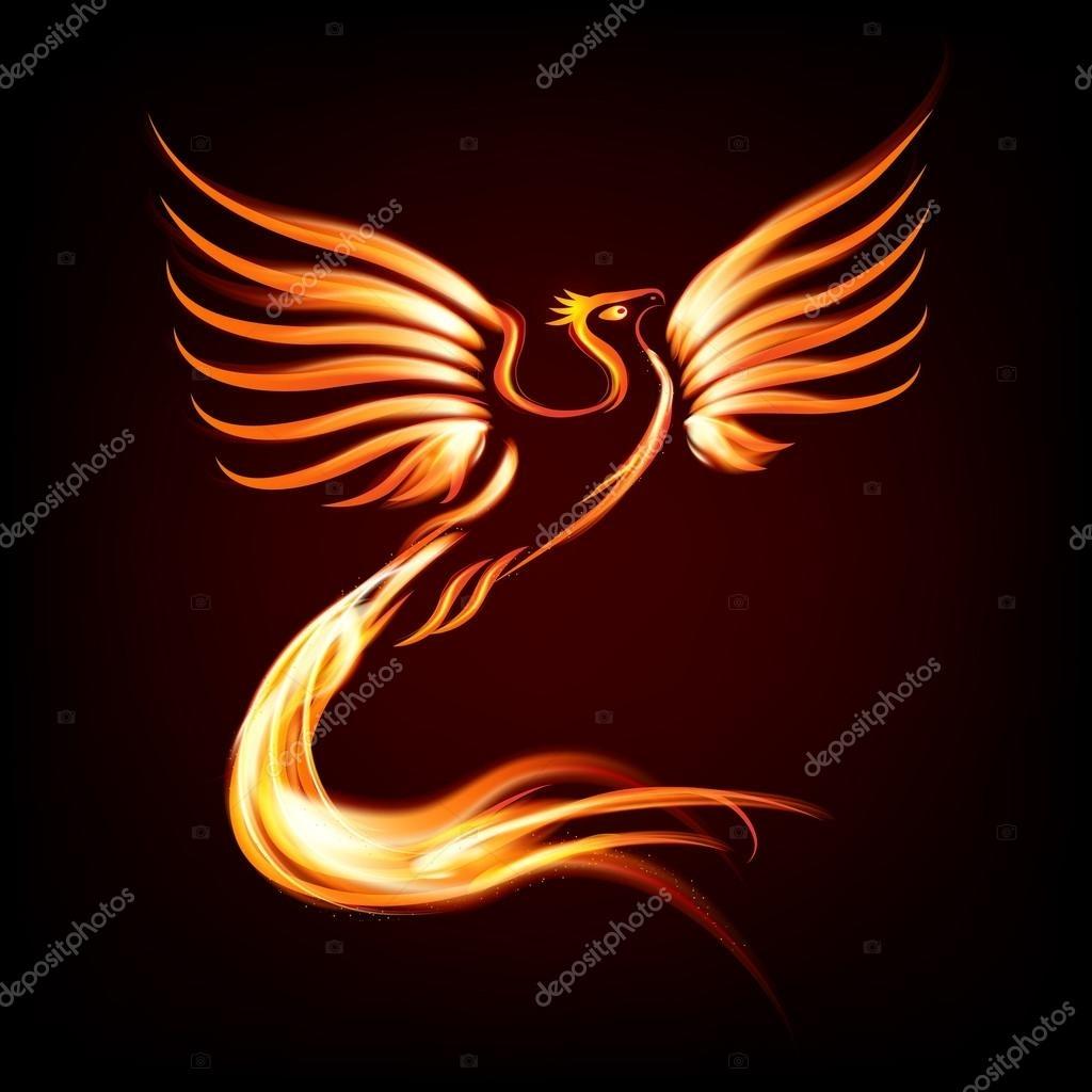 phoenix bird fire silhouette — stock vector © machacek #102404456