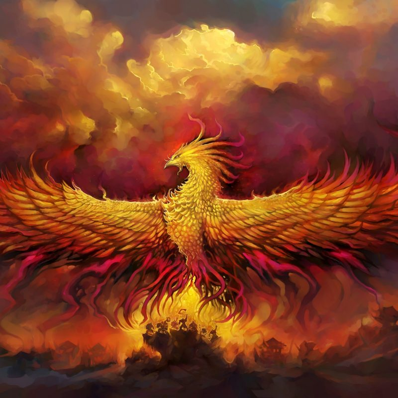 10 Most Popular Pics Of Phoenix Bird FULL HD 1920×1080 For PC Desktop 2018 free download phoenix bird wallpaper wallpaper studio 10 tens of thousands hd 800x800