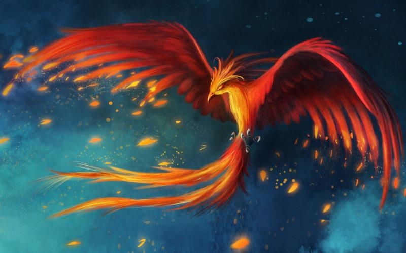 10 Latest Pics Of Phoenix FULL HD 1920×1080 For PC Desktop 2018 free download phoenix elixir 800x500
