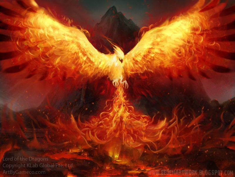 10 Latest Pics Of Phoenix FULL HD 1920×1080 For PC Desktop 2018 free download phoenix under 16s cup winners 2014 prestwich marauders fc 800x604