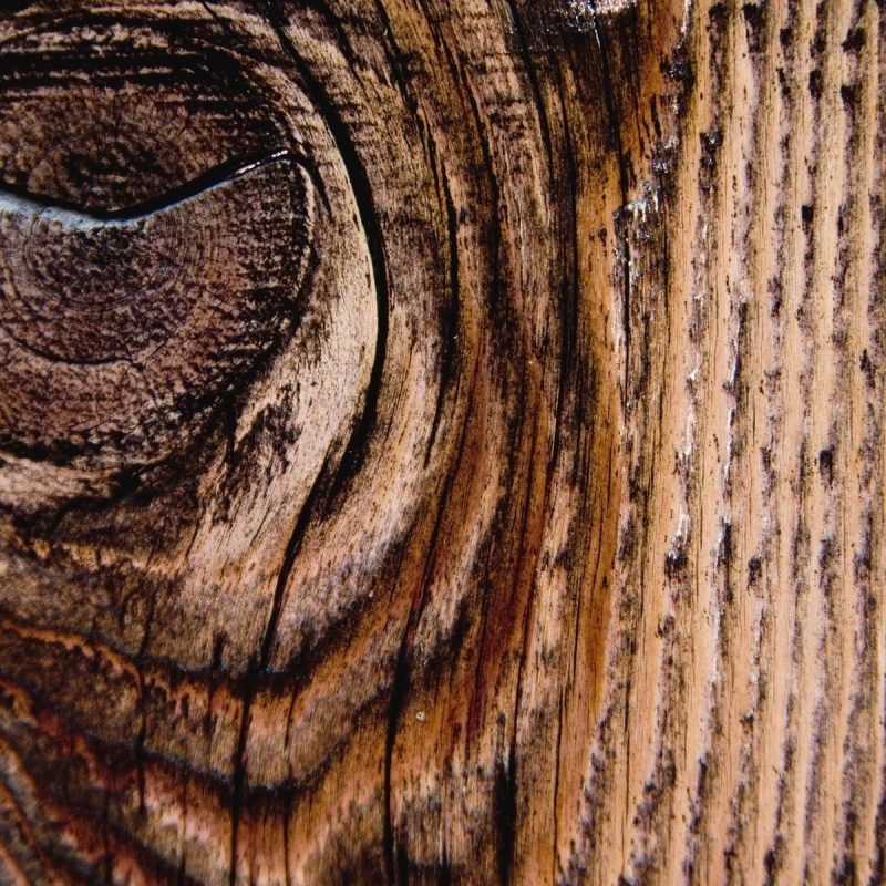 10 Best Wood Grain Phone Wallpaper FULL HD 1080p For PC Desktop 2020 free download phone wallpaper wood all types of design pinterest wallpaper 800x800