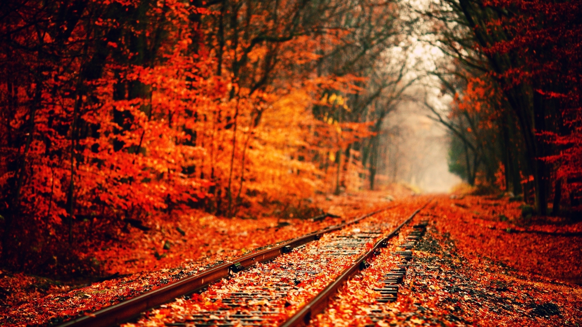 10 Latest Autumn Desktop Backgrounds Hd FULL HD 1080p For PC Desktop