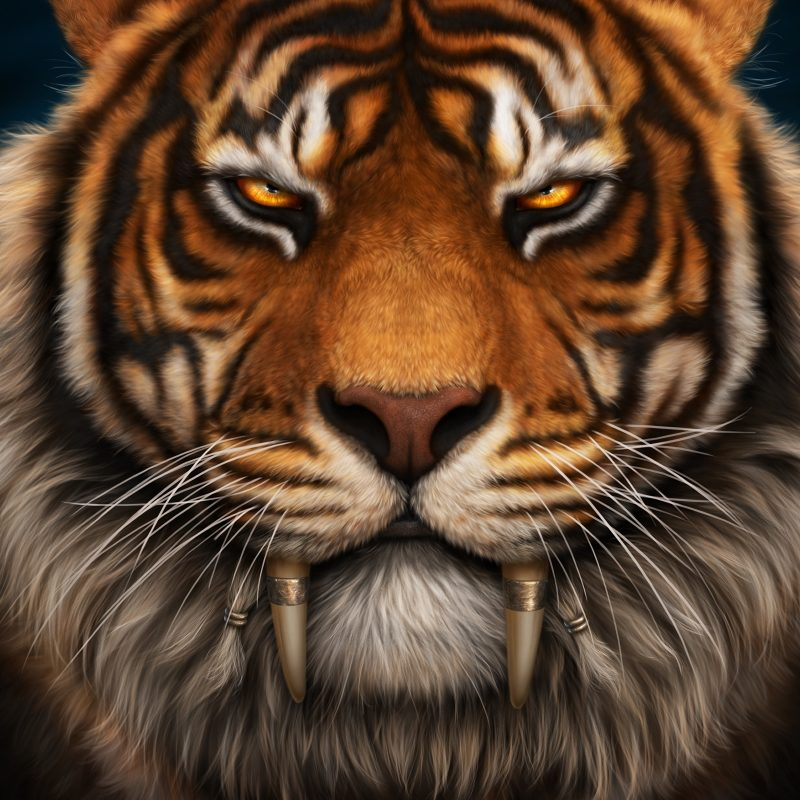 10 New Saber Tooth Tiger Wallpaper FULL HD 1080p For PC Background 2020 free download picture tigers canine tooth fangs saber toothed whiskers 3840x2400 800x800